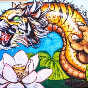 Ulasan Game Live Dragon Tiger (Pragmatic Play)