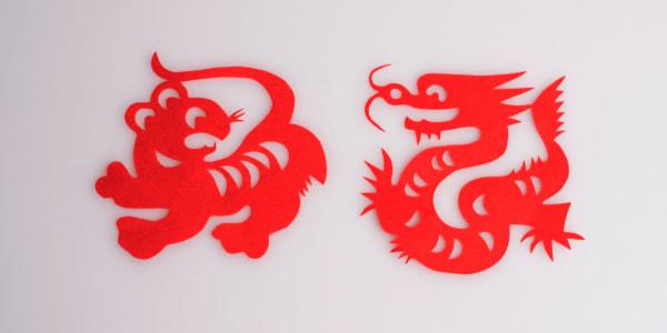 Dasar-dasar Bermain Dragon Tiger Online
